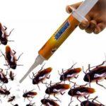مكافحة الحشرات والنمل الابيض والصراصير والنمل بالدمام (3)